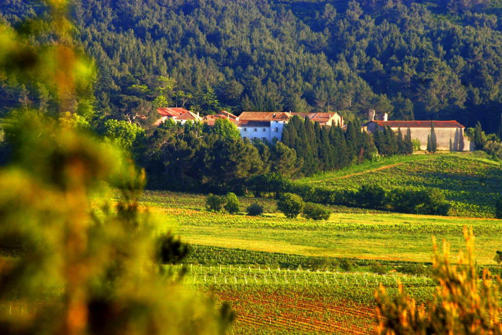 Oenotourisme Gayance Wines