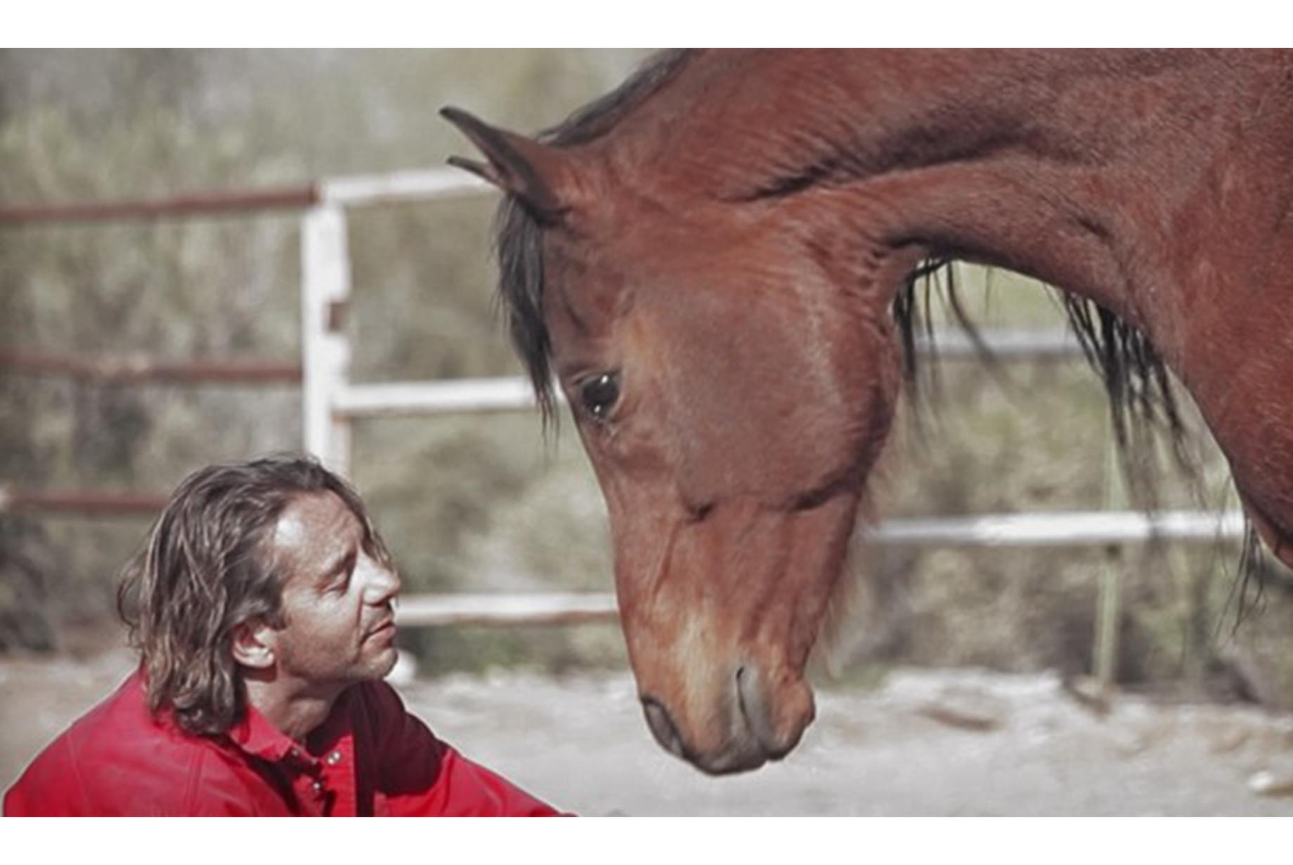 walter-badet-cheval